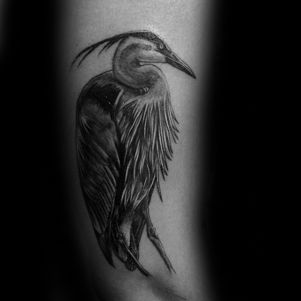 Outer Arm Heron Tattoo Design On Man
