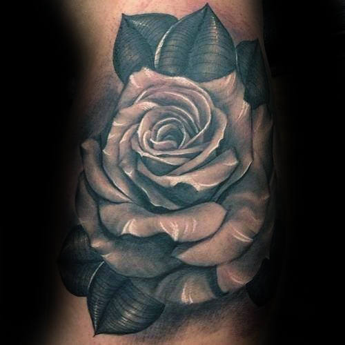 Blanco Realista Inner Arm Hombre Rose Tattoo Design Ideas