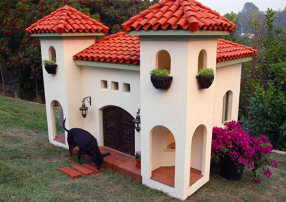 Cool Dog House Mansions