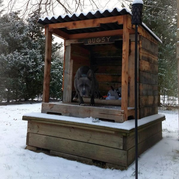 Cool Dog Houses For Large Breeds