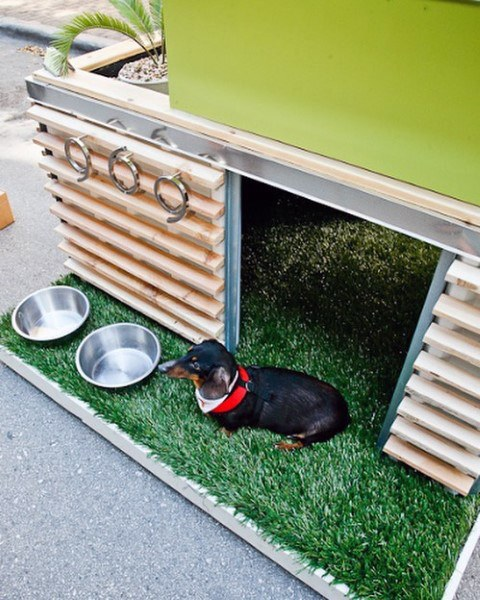 Custom Modern Cool Dog Houses With Grass Turf Porch