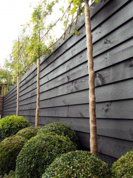 Black Stained Nice Wood Fence Exterior Ideas